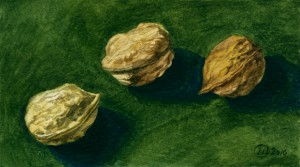 stil-life_watercolor_3nuts