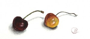 stil life watercolor cherries