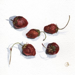 stil life watercolor strawberries